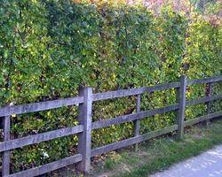 Sherwood & Co - matériaux - barrières & portails